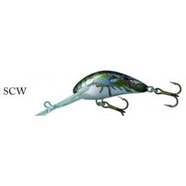 Hornet 6 S SCW