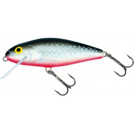Perch 12 SR GS