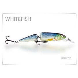 Whitefish 13 J F BS