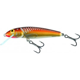 Minnow 9 F GM