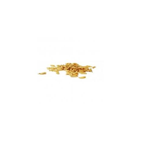 Masový červ - bílý (1dcl)